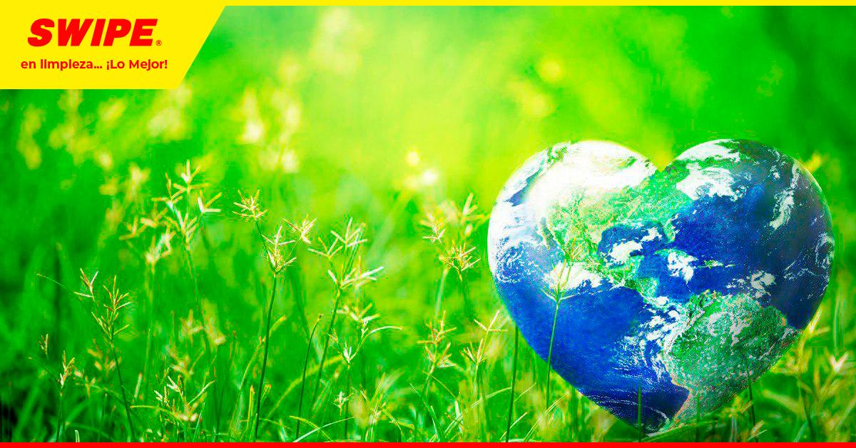 ¿Por qué Swipe Magic es amigable con el medio ambiente?